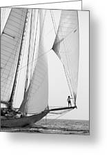 king of the world - a classic sailboat with all sails plying the sea on the island of Menorca Greeting Card