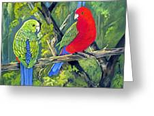 king parrots Australia Greeting Card