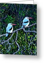 Woodland Kingfisher Greeting Card