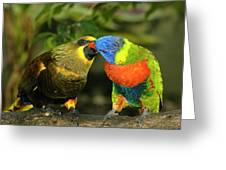 Kissing Birds Greeting Card