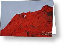 Kissing Camels On Fire Greeting Card