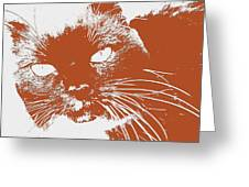 Kit Kat Greeting Card