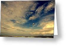 Kite At Folly Beach Near Charleston Sc Greeting Card