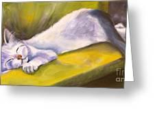 Kitten Dream Greeting Card