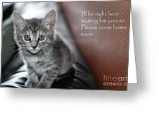 Kitten Greeting Card Greeting Card by Micah May