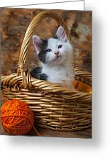 Kitten In Basket With Orange Yarn Greeting Card