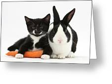 Kitten, Rabbit And Carrot Greeting Card