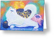 Kitties For Jenny Greeting Card