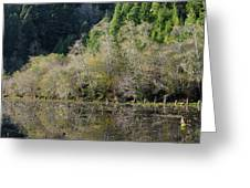 Klamath Pond Greeting Card