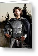 Knight In Shining Armour Greeting Card by Yedidya yos mizrachi