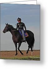 Knight Jockey Greeting Card by PJQandFriends Photography