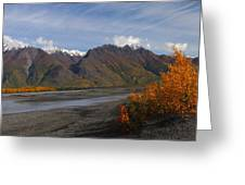 Knik River Greeting Card