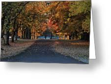 Knox Fall 8554 Greeting Card
