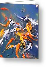 Koi Fish In Pond Greeting Card