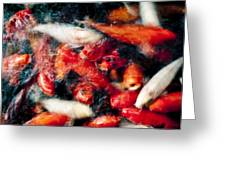 Koi Fish Movement Vi Greeting Card