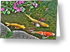 Koi Fish Poses Greeting Card