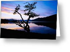 Kylemore Lake, Connemara, Co Galway Greeting Card