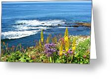 La Jolla Coast Greeting Card