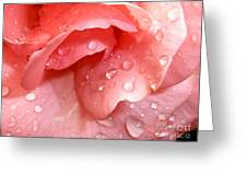 La Vie En Rose Greeting Card by Jan Willem Van Swigchem