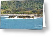 Labadee Haiti Greeting Card