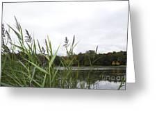 Lac Des Castors Greeting Card