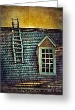 Ladder On Roof Greeting Card