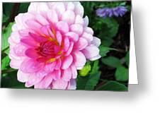 Lady Dahlia Greeting Card
