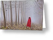 Lady In Red - 7 Greeting Card