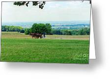 Lady Plowing In Field Greeting Card