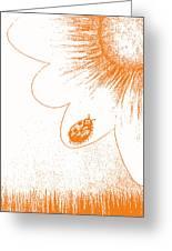 Ladybug On Daisy By Shawna Erback Greeting Card