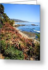 Laguna Beach Coastline Photo Greeting Card