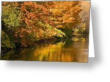 Lake And Forest In Autumn Greeting Card