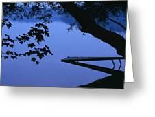 Lake And Trees At Dusk Greeting Card