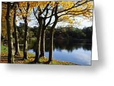 Lake And Trees, Mount Stewart, Co Down Greeting Card