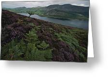 Lake District View From A Hillside Greeting Card