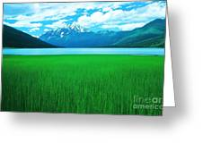 Lake Eklutna 2 Greeting Card by Ronnie Glover