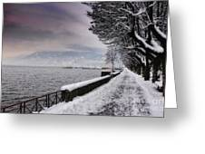 Lake Front In Winter Greeting Card
