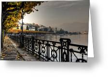 Lake Front With Autumn Trees Greeting Card