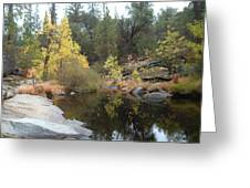 Lake In The Forest Greeting Card by Naxart Studio
