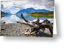 Lake Kathleen In Kluane National Park Greeting Card