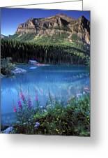 Lake Louise Banff Canada Greeting Card