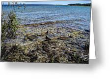 Lake Michigan 1 Greeting Card
