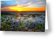 Lake Okeechobee Sunset Greeting Card