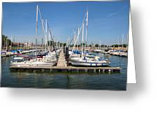 Lake Pepin Harbor Greeting Card