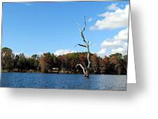 Lake Rousseau Greeting Card