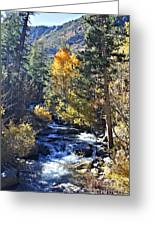 Lake Sabrina Creek Greeting Card
