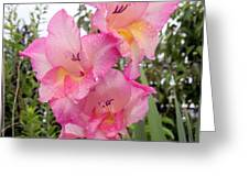 Lake Shore Flowers Two Greeting Card