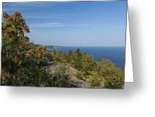 Lake Superior Palisades 2 Greeting Card