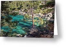 Lake Tahoe Swimming Hole Greeting Card