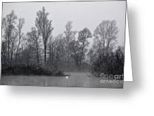 Lake With Trees Greeting Card